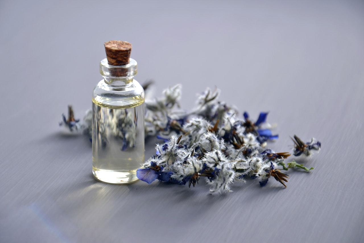 Popularność perfum marki Euphoria
